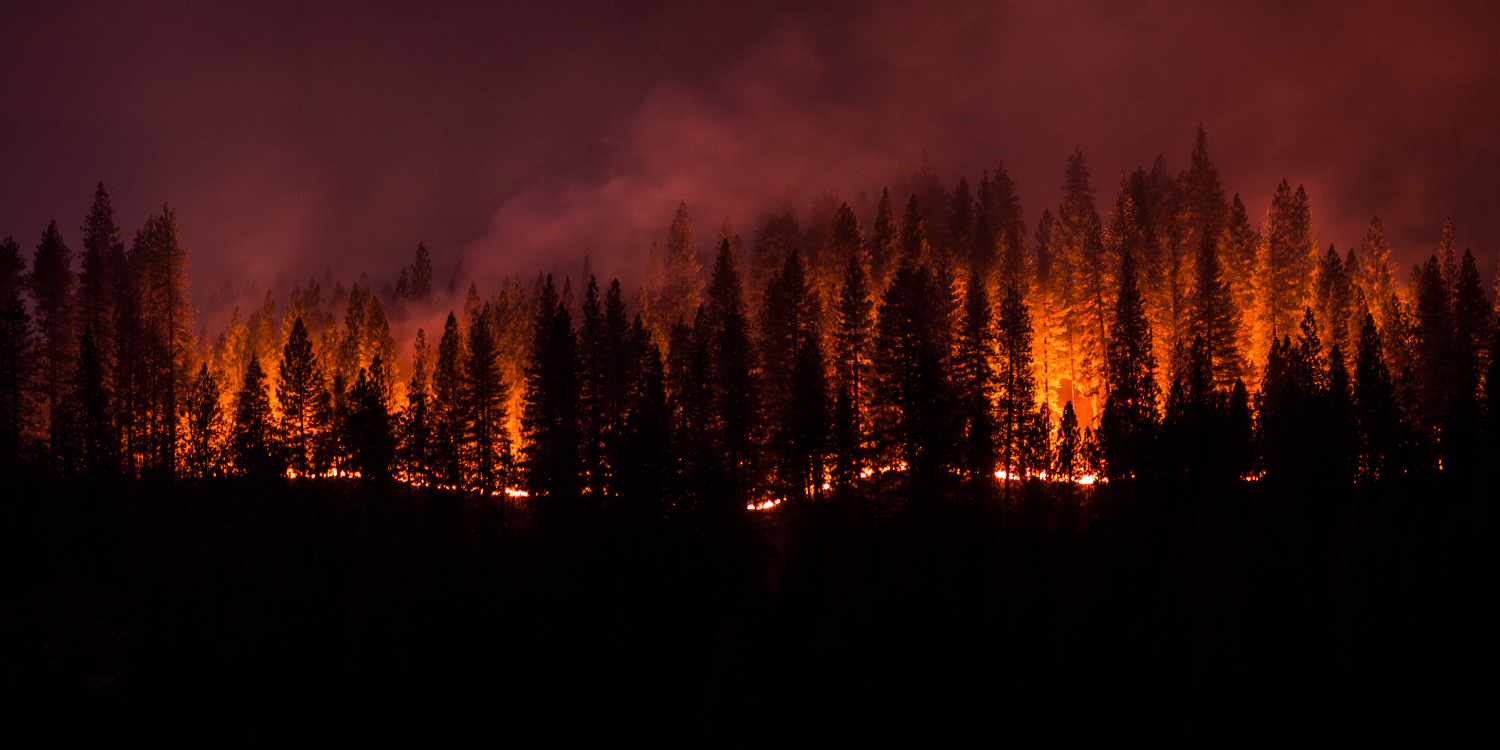 Applying Deep Learning to Detect Wildfires
