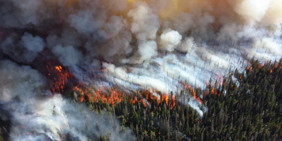 Artificial Intelligence For Wildfires: Scaling a Solution To Save Lives, Infrastructure, and The Environment