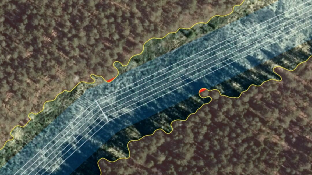 Tree Identification on Satellite Images to Prevent Forest Fires