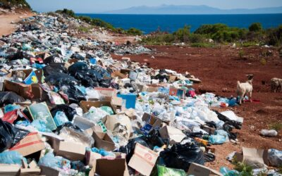 Applying Machine Learning to Predict Illegal Dumpsites