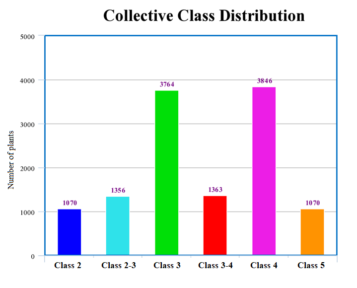 Fig 7,  Distribution of the different plant classes