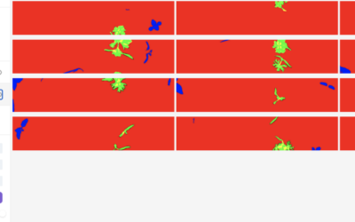 Deep Learning Pipeline for Image Segmentation & Laser Weed Removal