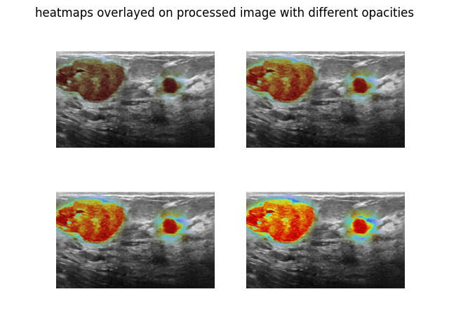 Source: Omdena Heat maps with different opacity